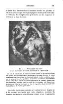 الصفحة 791