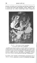الصفحة 796