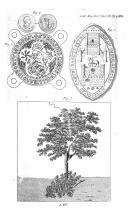 الصفحة 1104