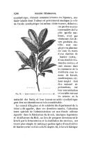 الصفحة 1206
