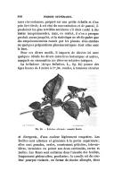 الصفحة 888