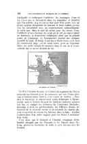الصفحة 402
