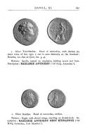 الصفحة 191