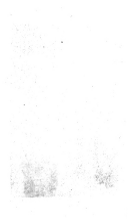 الصفحة 400