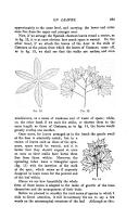 الصفحة 635
