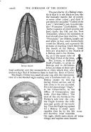الصفحة xxxviii