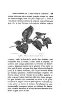 الصفحة 761