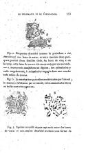 الصفحة 533