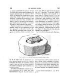 الصفحة 969